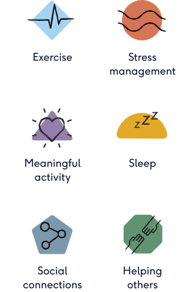 The six pillars left to right; Exercise, Stress management, Meaningful activity, Sleep, Social connections, Helping others